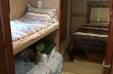 2007 Georgie Boy Pursuit 3540 DS With BunkBed Option - Georgie Boy- Hotel on Wheels