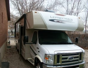 Coachmen Leprechaun 317SA