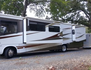 FOREST RIVER GEORGETOWN 350TS