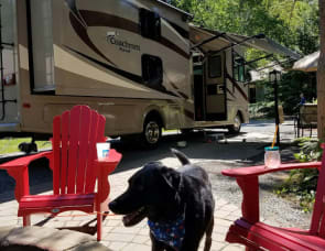 Coachmen Pursuit 33BH 33bh bunkhouse