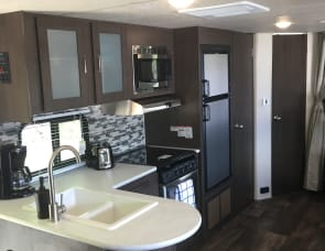 Forest River RV Salem Cruise Lite 263BHXL