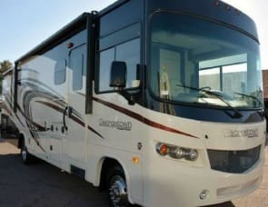 Forest River RV Georgetown 335DS