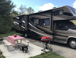 Forest River RV Sunseeker 3170DS