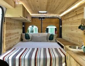 RAM Promaster Camper Van