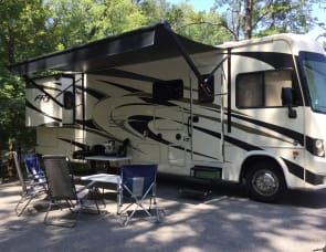 Forest River RV FR3 30DS