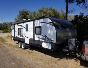 Forest River RV Salem Cruise Lite 261BHXL