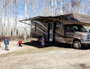 Forest River RV Sunseeker 3050S Ford