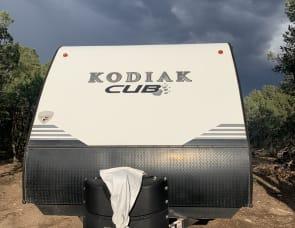 Dutchmen RV Kodiak Cub 176RD