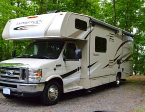 Coachmen Leprechaun 260ds