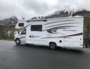 Forest River RV Sunseeker 2450S Ford