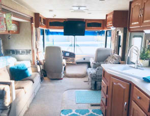 Forest River RV Georgetown 350TS