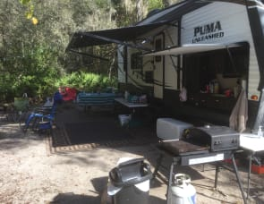 Palomino Puma Unleashed 25-TFS