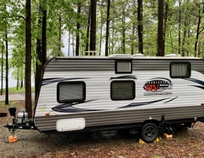 Forest River RV Salem 195BH