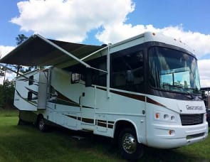 Forest River RV Georgetown XL 350TS