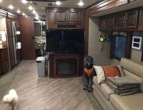 Fleetwood RV Pace Arrow LXE 38F