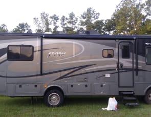 Fleetwood RV Storm 28F