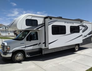 Forest River RV Forester 3011DS