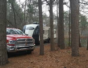 2016 Forest River 311RLS Vibe