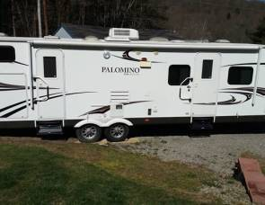 2011 PALOMINO THOROUGHBRED ELITE